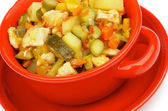 Vegetables and Chicken Ragout — Stock Photo
