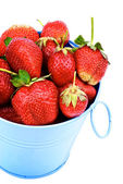 Strawberries in Blue Bucket — Stok fotoğraf
