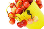 Sweet Cherries — Stockfoto