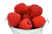 Raspberries in Bucket — Stock Photo