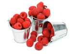 Buckets with Raspberries — Stock fotografie