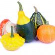 Stock Photo: Squash and Pumpkin