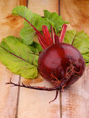Beetroot — Stock Photo