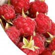 Foto Stock: Raspberries