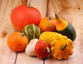 Squash and Pumpkins — Stock Photo