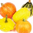 Stock Photo: Squash and Pumpkins