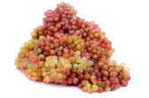 Sultana Grape — Stock Photo