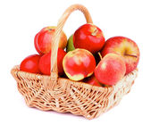Autumn Apples — Stock Photo