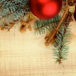 Christmas Decoration — Stock Photo #34676213