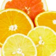Citrus Halves — Stock Photo