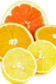 Citrus Halves — Stockfoto