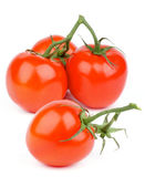 Ripe Tomatoes — Stock Photo