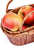 バスケットにリンゴ — ストック写真