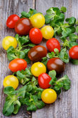 Various Cherry Tomatoes — Stock Photo
