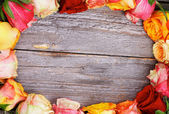 Cornice di rose — Foto Stock