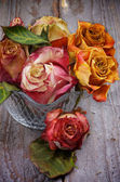 Bunch of Withered Roses — Stock Photo