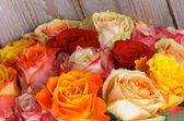 Bunch of Roses — Stock Photo