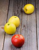 Mogna äpplen — Stockfoto