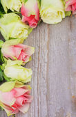 Marco de rosas — Foto de Stock