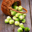 Brussels Sprouts — Stock Photo #46645203