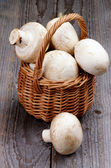 Raw Champignons — Stock Photo