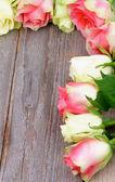 Quadro de rosas — Foto Stock