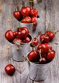 Cereza dulce — Foto de Stock