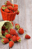 Forest Strawberries — Stock Photo