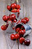 甜樱桃 — 图库照片