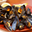 Boiled Mussels — Stock Photo #50035951