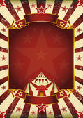 Fantastic grunge circus — Stock Vector