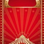 Circus vintage — Stock Vector #29939567