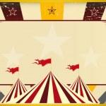 Circus vintage sunbeams — Stock Vector #29963289