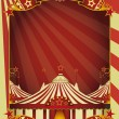 Circus advertising — Stock Vector #30004717