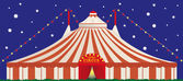 Big top by night. — Stock vektor