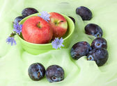 Fruit still life with chicory, apples, plums — Stock Photo