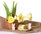 Easter eggs with  yellow tulips — Stock Photo