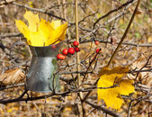 Yellow maple leaves with pitcher — Stock Photo