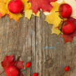 Border - autumn apples, rose hips and leaves — Stock Photo