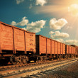 Freight train — Stock Photo #23968701