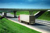 Bir yolda kamyonlar — Stok fotoğraf
