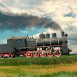 Steam train — Stock Photo #30148415