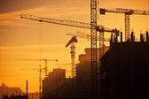 City of construction cranes — Stock Photo