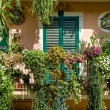 Traditional Italian house decorated by flowers — Stock Photo #50875685