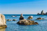 Speed boat and sharp rocks near Isola Bella — Stock Photo