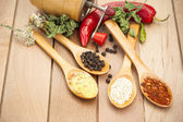 Spices on spoons — Stock Photo