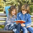 Stock Photo: Children learn in nature