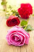 Romantik und rosen — Stockfoto
