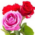 Fresh flower Bouquet — Stock Photo