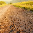 Dirt road — Stock Photo #28698281